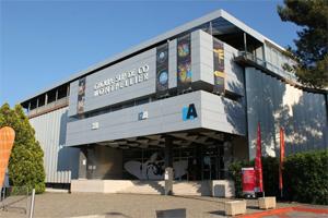 Le Tour de France qui s'achève avec l'ESC Montpellier