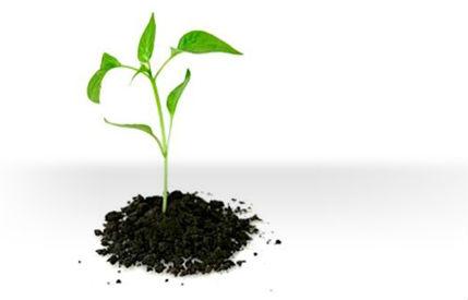 MBA spécialisé en Entrepreneuriat, Stratégies et Consulting
