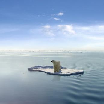 MS Gestion du Développement Durable et du Changement Climatique